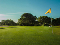 Open Alenda Golf Page
