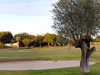 Open Club de Golf Playa Serena Page