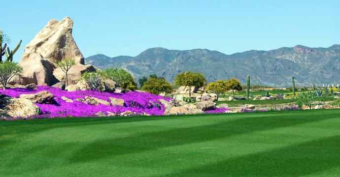 Golf Desert Springs