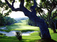 Valderrama Golf Club breaks