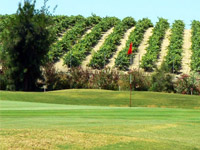 Open Sherry Golf Jerez Page