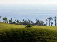 Open Macenas Golf course Page