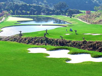 Open Alferini Golf Club Page