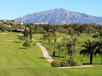 Open El Paraiso Golf Page