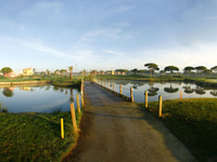 Open Sancti Petri Hills Golf Page