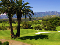 Open Real Club de Golf las Palmas Page