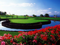Open Amarilla Golf & Country Club Page