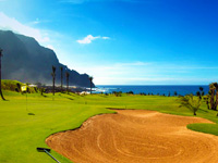 Open Buenavista Golf Course Page