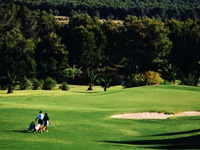 Open Poniente Golf Course Page