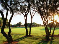 Open Son Antem Golf Course East Page