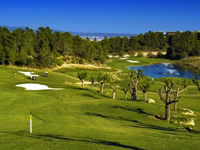 Open Son Quint Golf Course Page