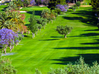 Open Altea Golf Club Page