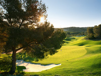 Open Las Colinas Golf & Country Club Page