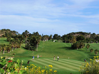 Open Campoamor Golf Course Page