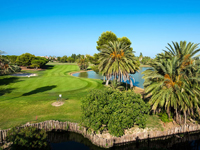 Open Oliva Nova Golf Course Page
