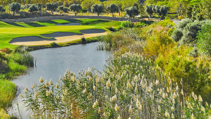 Lumine Lakes Course - Photo 3