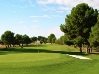 Open Real Aeroclub Zaragoza Golf Page