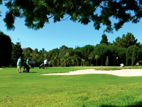 Open Cierro Grande Golf Course Page