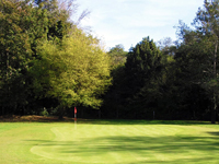 Open Madera III Golf Course Page