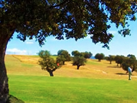 Open Las Erillas Golf Course Page