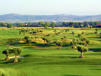Open Palomarejos Golf Course Page
