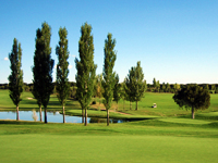 Open Lerma Golf Course Page