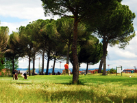 Open Aldeamayor Golf Course Page