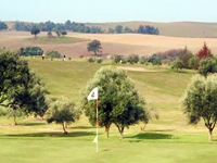 Open Merida Don Tello Golf Course Page