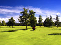 Open Campomar Golf Course Page