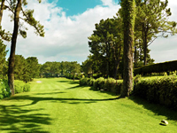 Open La Toja Golf Course Page