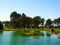 Open Meis Golf Course Page