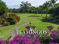 Open Flamingos Golf Course Page