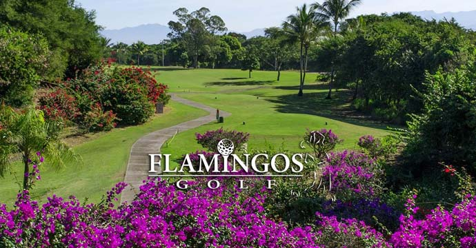 Flamingos Golf Course - Photo 1