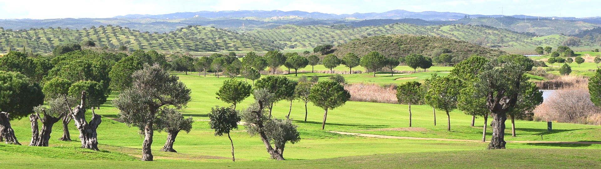 Valle Guadiana Links  - Photo 1